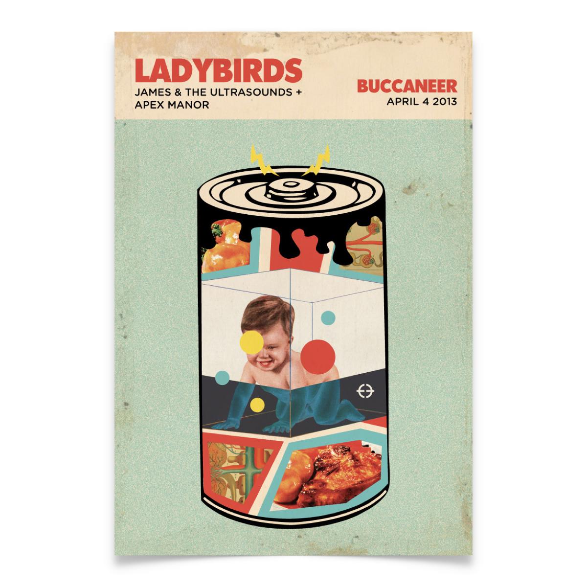 SFER-Posters-Ladybirds.jpeg