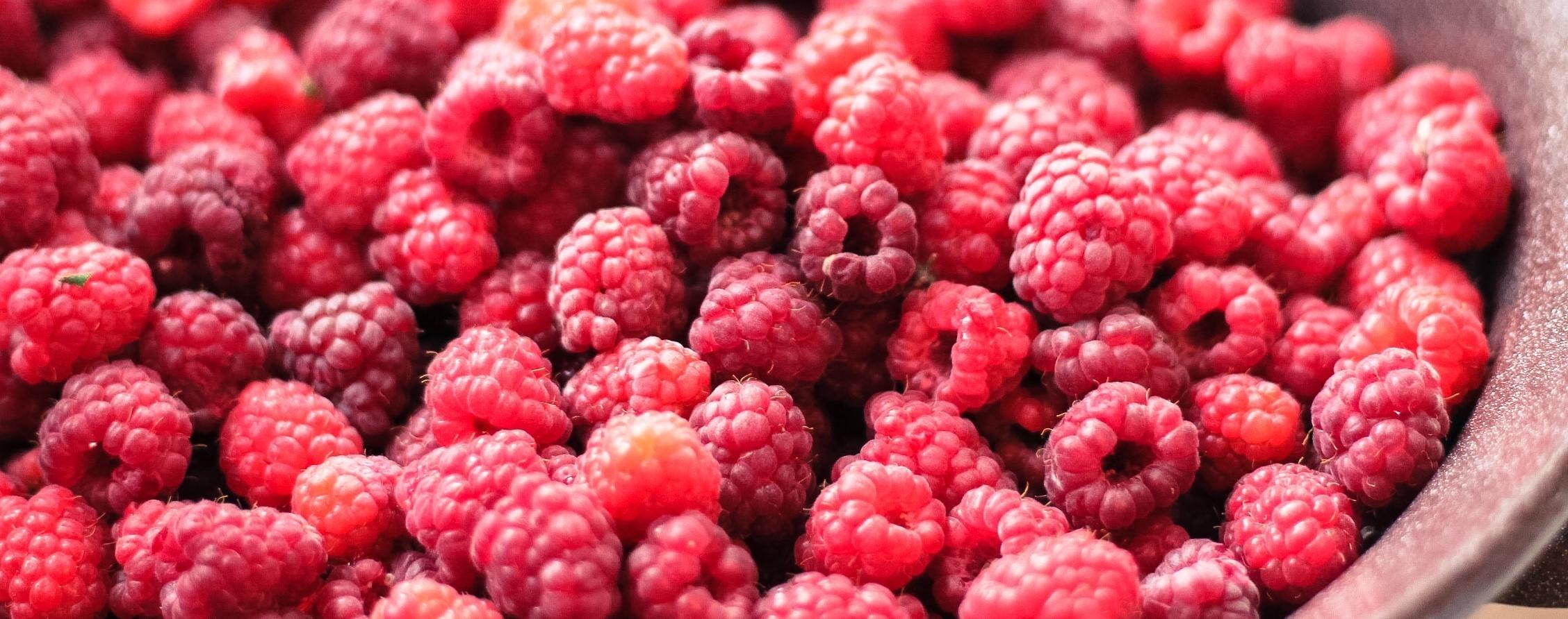 Bowl of Rasberries_Veronica Sulinska_StockSnap.io Photo.jpg