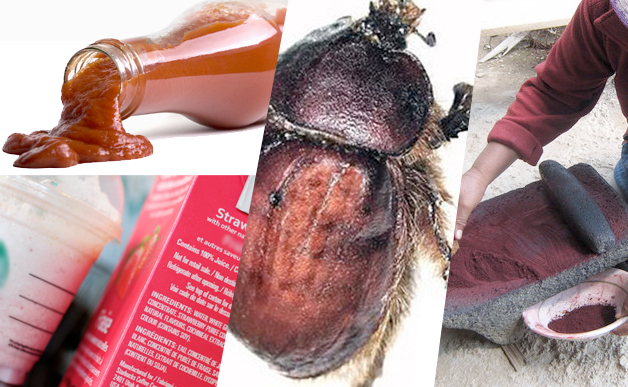 image sourceØhttp://cdn.scahw.com.au/cdn-1ce618eb32fd5f0/ImageVaultFiles/id_168481/cf_3/red-food-Cochineal-extract.jpg