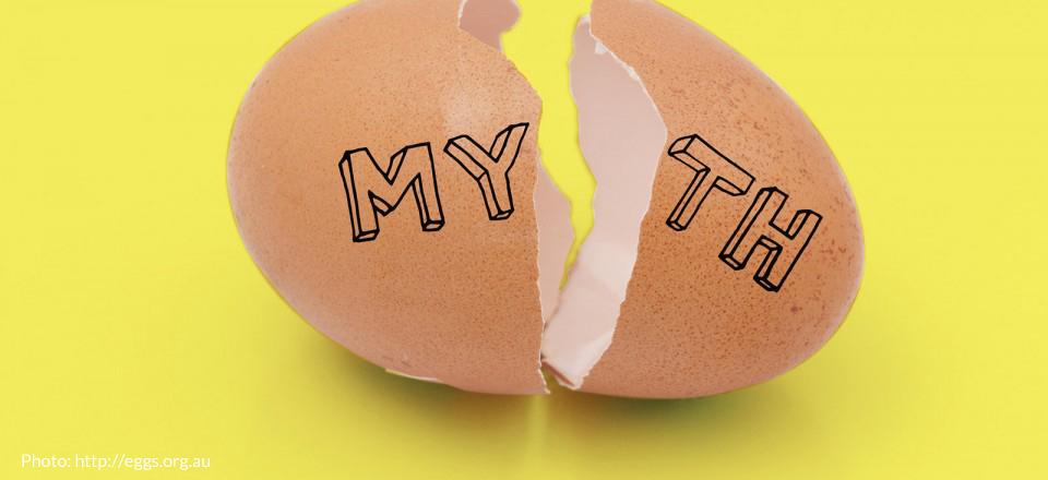 Sannheten om egg og kolesterol