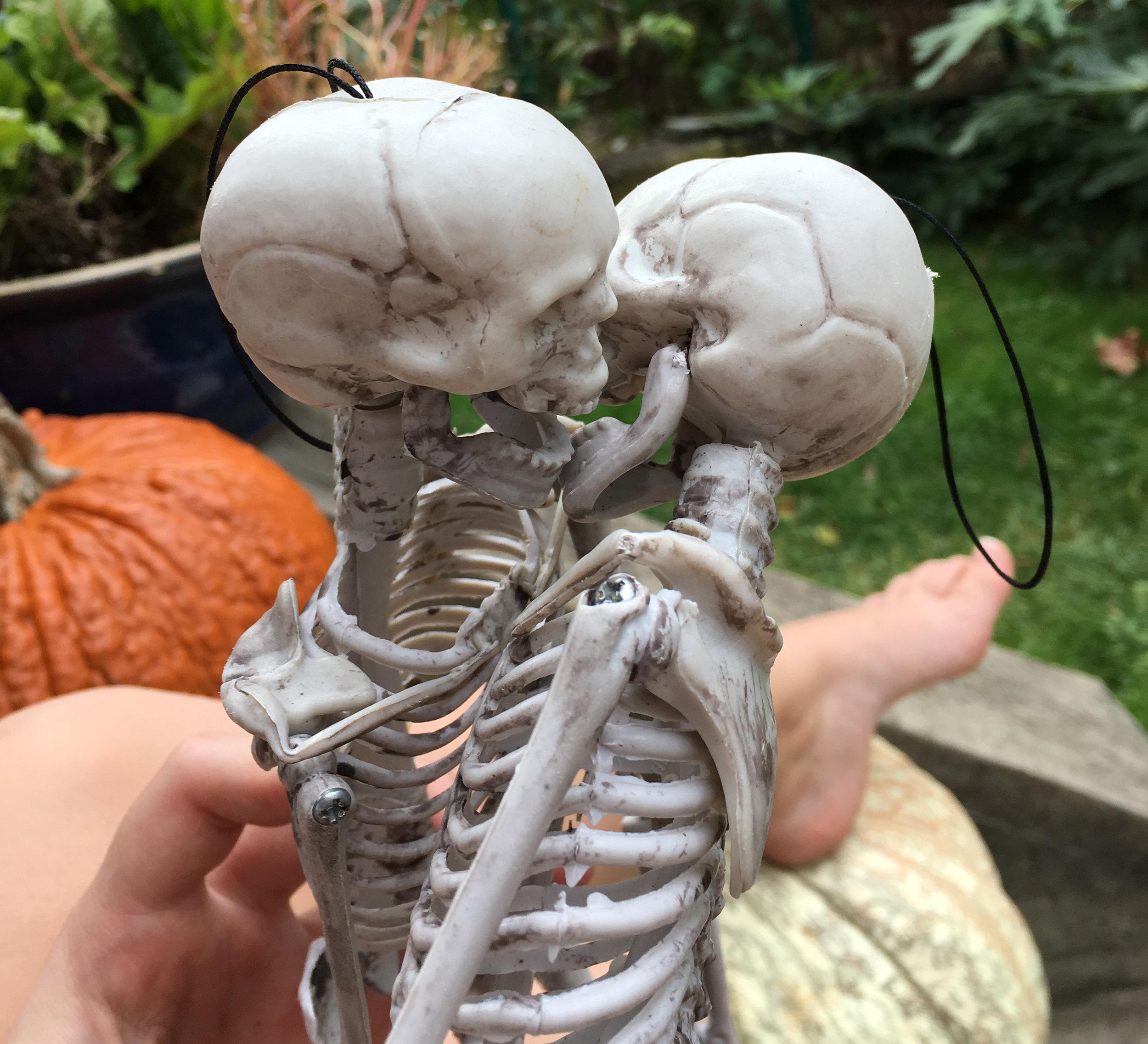 07_skeletons.jpg