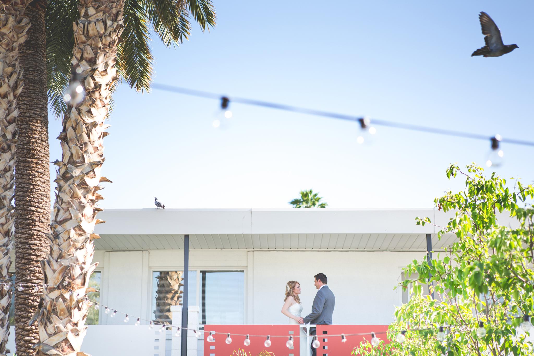 scottsdale-wedding-photographer-el-dorado-cool-bride-groom-portrait-bird