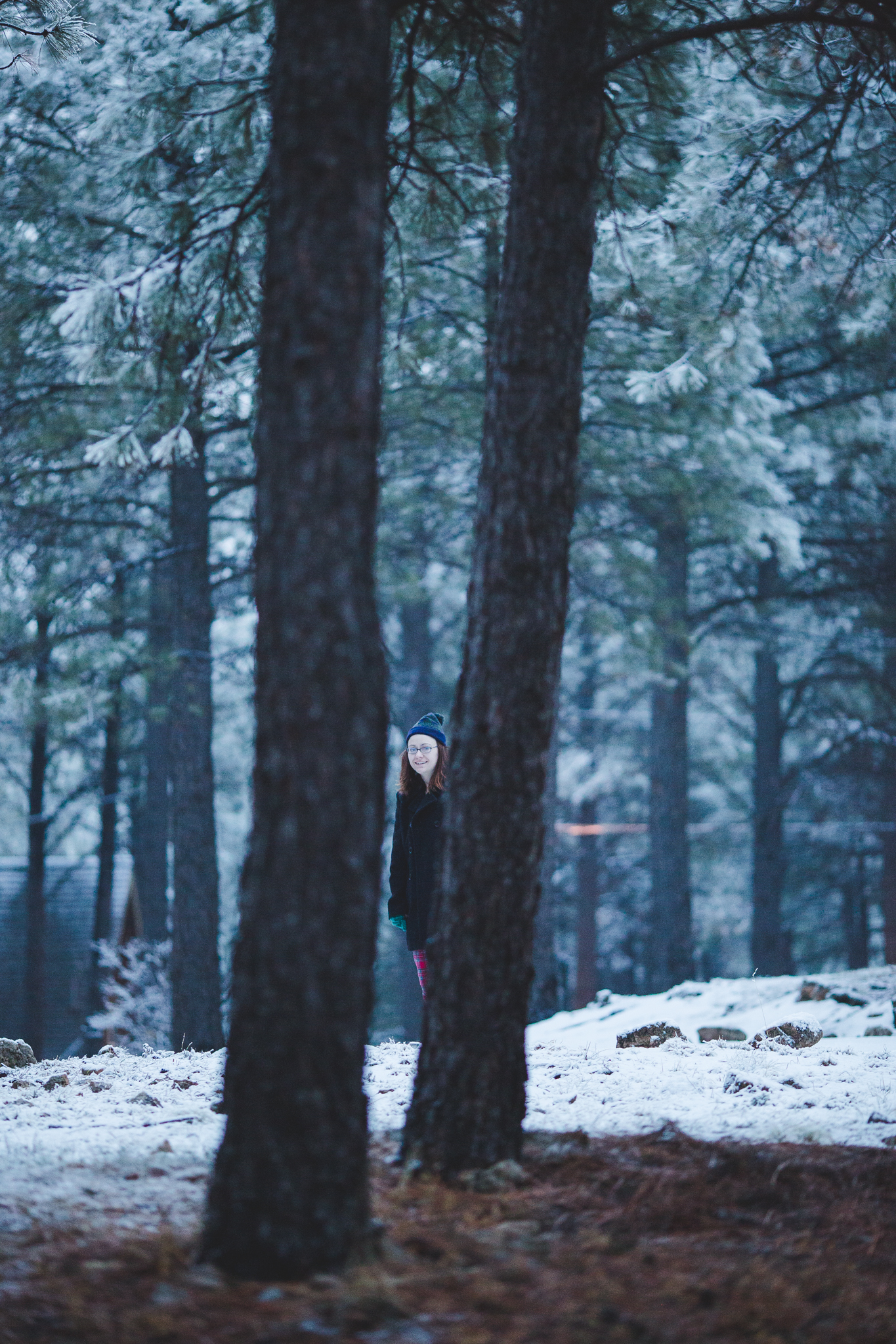 katie amongst the trees