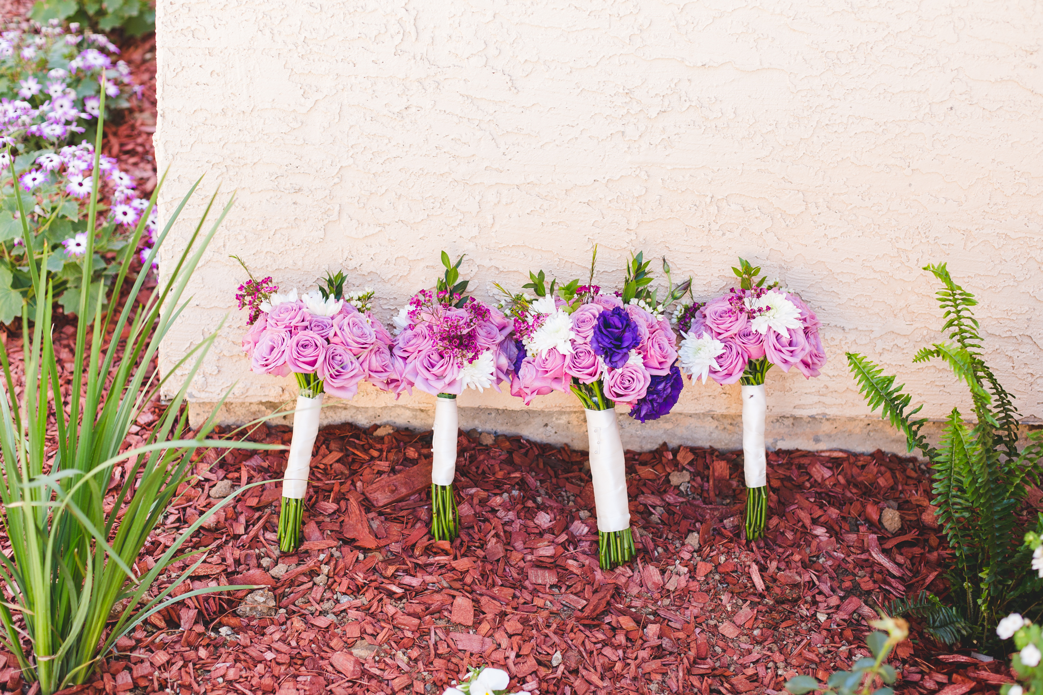 sd flowers leaning against house
