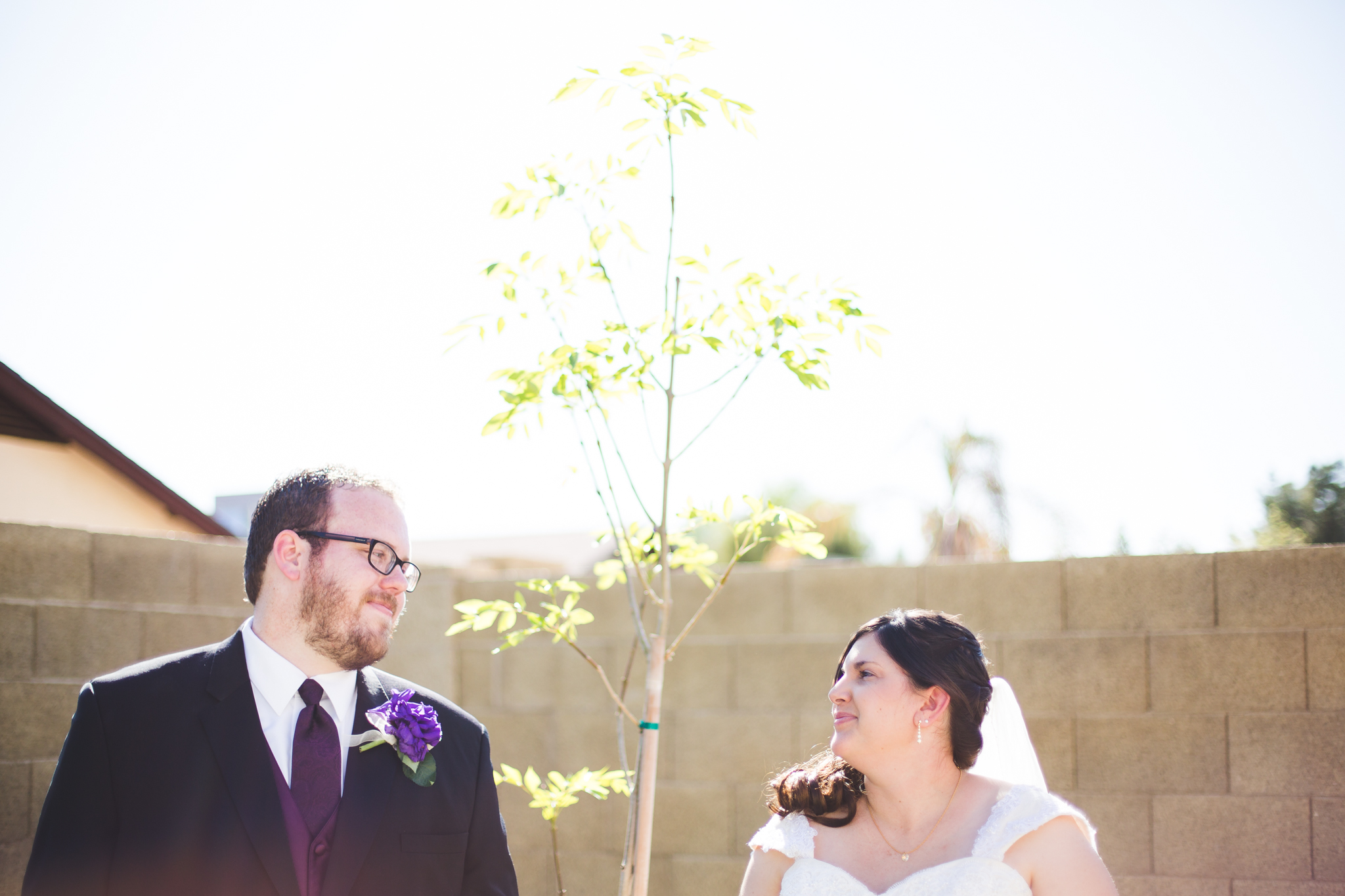 bride and groom look at each other next to their tree sd