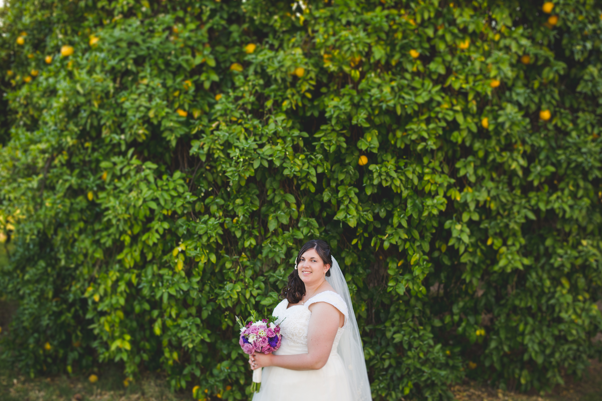 bride near large green tree epic sd