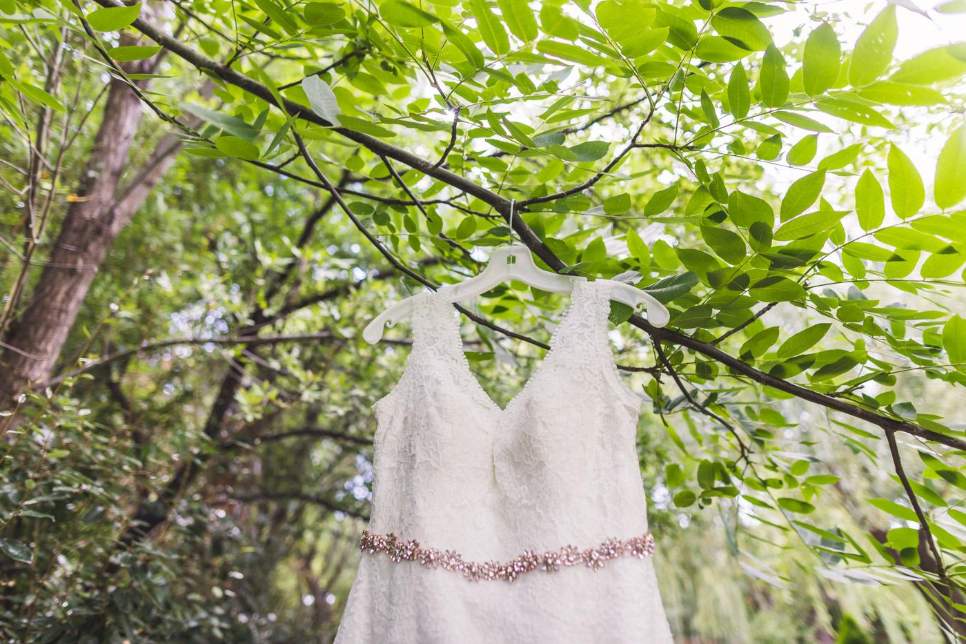 az-wedding-dress-in-tree
