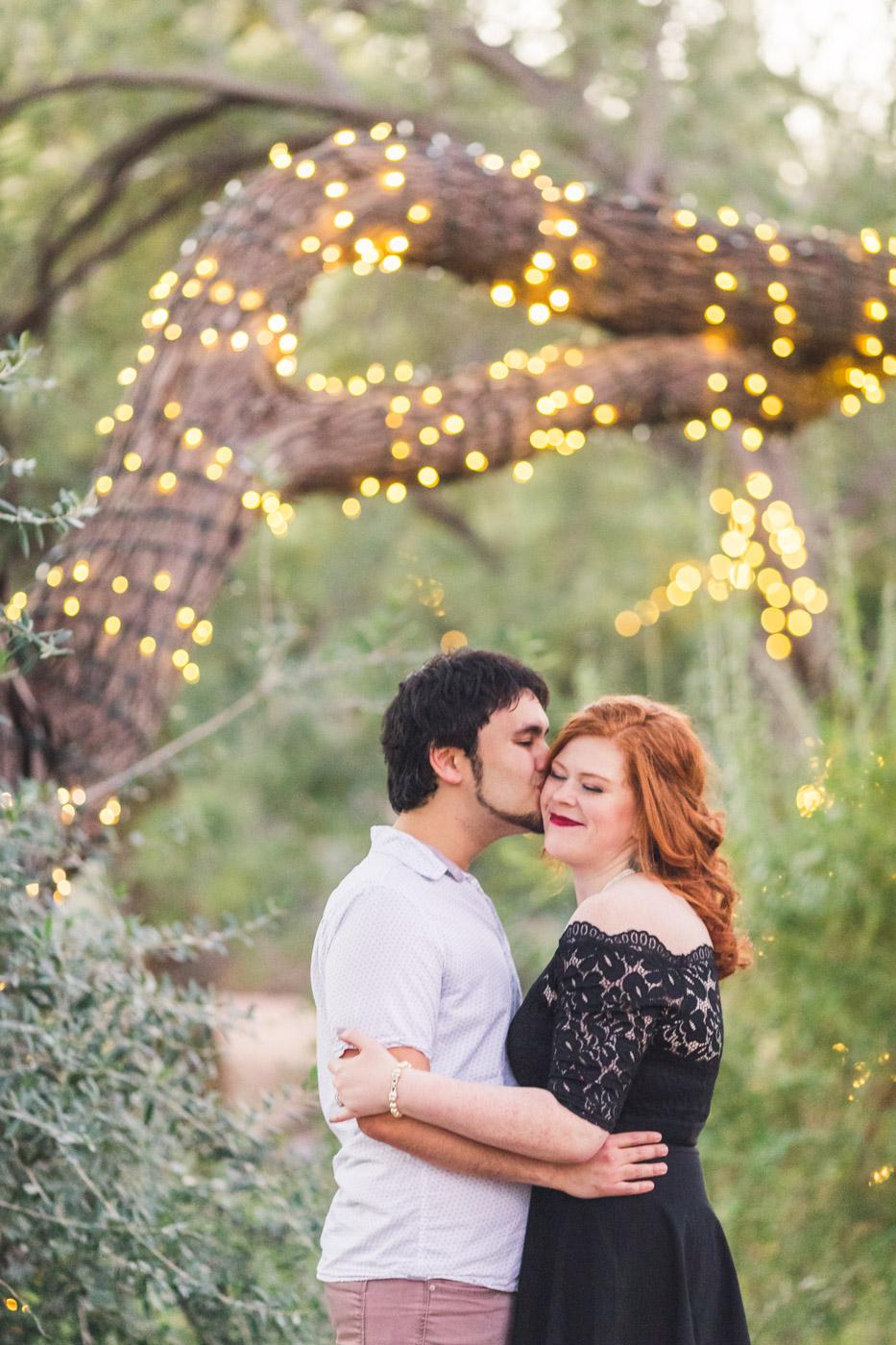 desert-botanical-garden-twinkle-lights