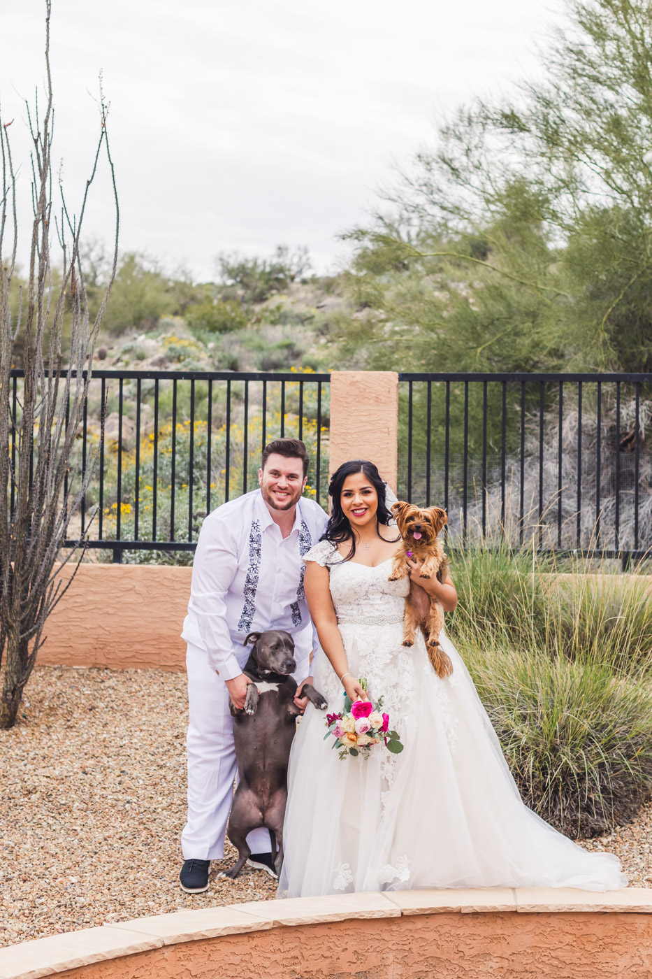 bride-and-groom-wedding-portrait-with-dogs
