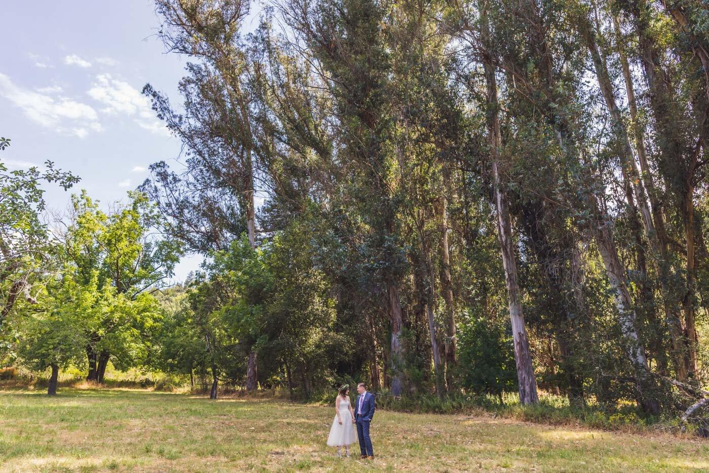 quail-hollow-ranch-wedding-santa-cruz