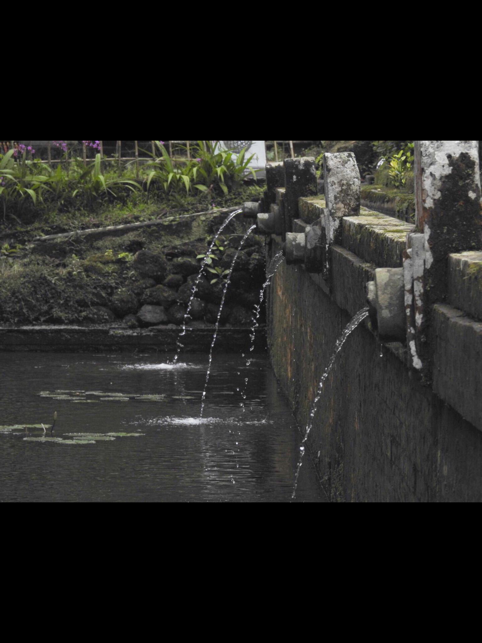 Holy Water of Tampaksiring