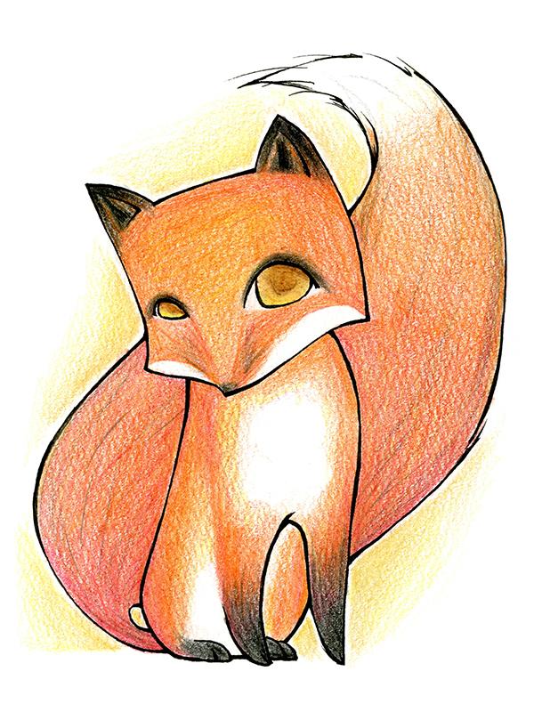 sheila-fox.jpg