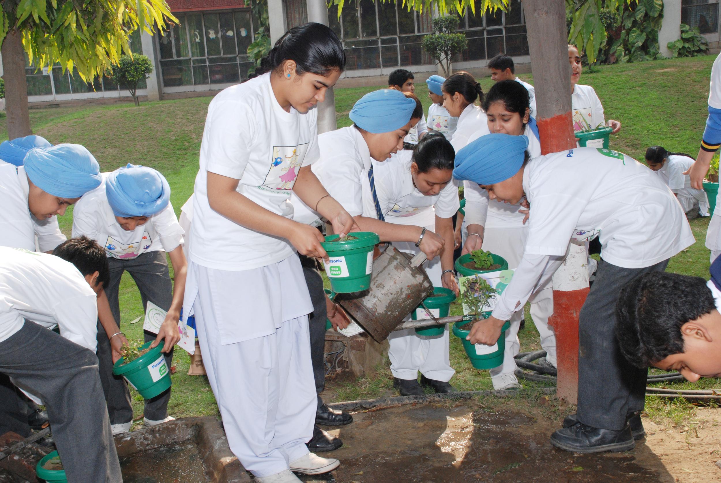 guru planting.jpg