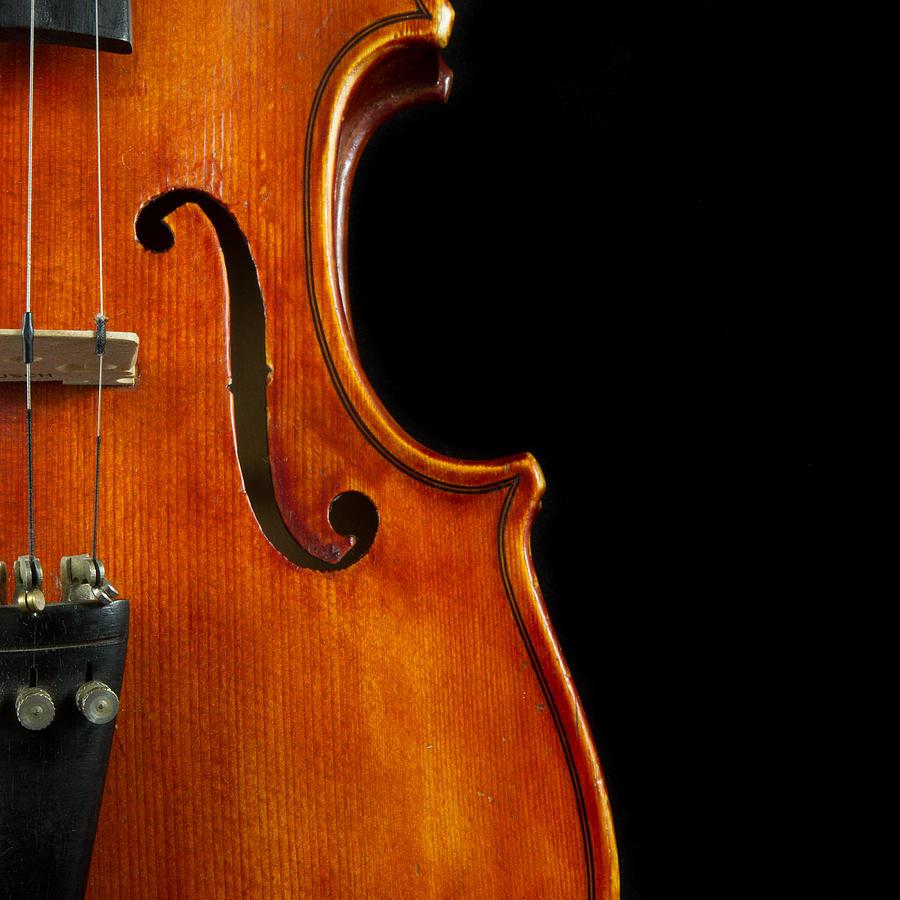 vertical-violin-art-iordanis-pallikaras.jpg