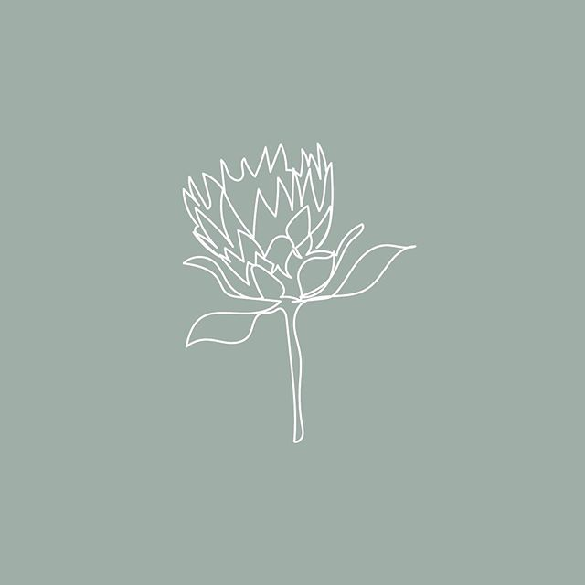 We love the botanical illustrations we recently created for a client based in Byron Bay. She's passionate about her natural surroundings and - among other modalities - applies the wisdom of Australian Bush Flower Essences to her work. The wisdom of trees and plants has always fascinated me and I'm thrilled she picked this concept for her visual identity 🌱Illustrations and icons are essential to complement a logo - the simpler the better! ⠀⠀⠀⠀⠀⠀⠀⠀⠀ Shout out to my illustrator @tatisgs who's back in Colombia after a successful few years studying and working in Australia. So happy she's kicking arse over there and grateful the internet makes it all possible! x ⠀⠀⠀⠀⠀⠀⠀⠀⠀ ⠀⠀⠀⠀⠀⠀⠀⠀⠀ ⠀⠀⠀⠀⠀⠀⠀⠀⠀ ⠀⠀⠀⠀⠀⠀⠀⠀⠀ ⠀⠀⠀⠀⠀⠀⠀⠀⠀ ⠀⠀⠀⠀⠀⠀⠀⠀⠀ ⠀⠀⠀⠀⠀⠀⠀⠀⠀ ⠀⠀⠀⠀⠀⠀⠀⠀⠀ ⠀⠀⠀⠀⠀⠀⠀⠀⠀ #amoracreative #brandstylist #multicultural #brandingstudio #meaningfulmarketing #digitalnomad #byronbay #wearethecreativeeconomy #whitespacespring #designerlife #choosejoy #illustration #risingtidesociety #communityovercompetition #bushflowers #thehappynow #petitejoys #livefullyalive #flashesofdelight #thatsdarling #calledtobecreative
