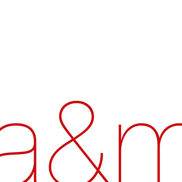 A & M Consulting