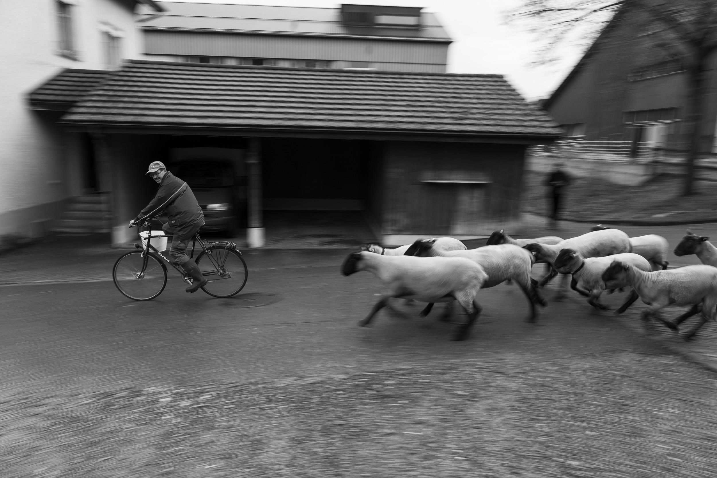 Foto: Peter Schäublin /Leica SL / Vario-Elmarit SL 2.8 24-90 ASPH auf 24 mm / 1/30 sec. f 10 125 ISO
