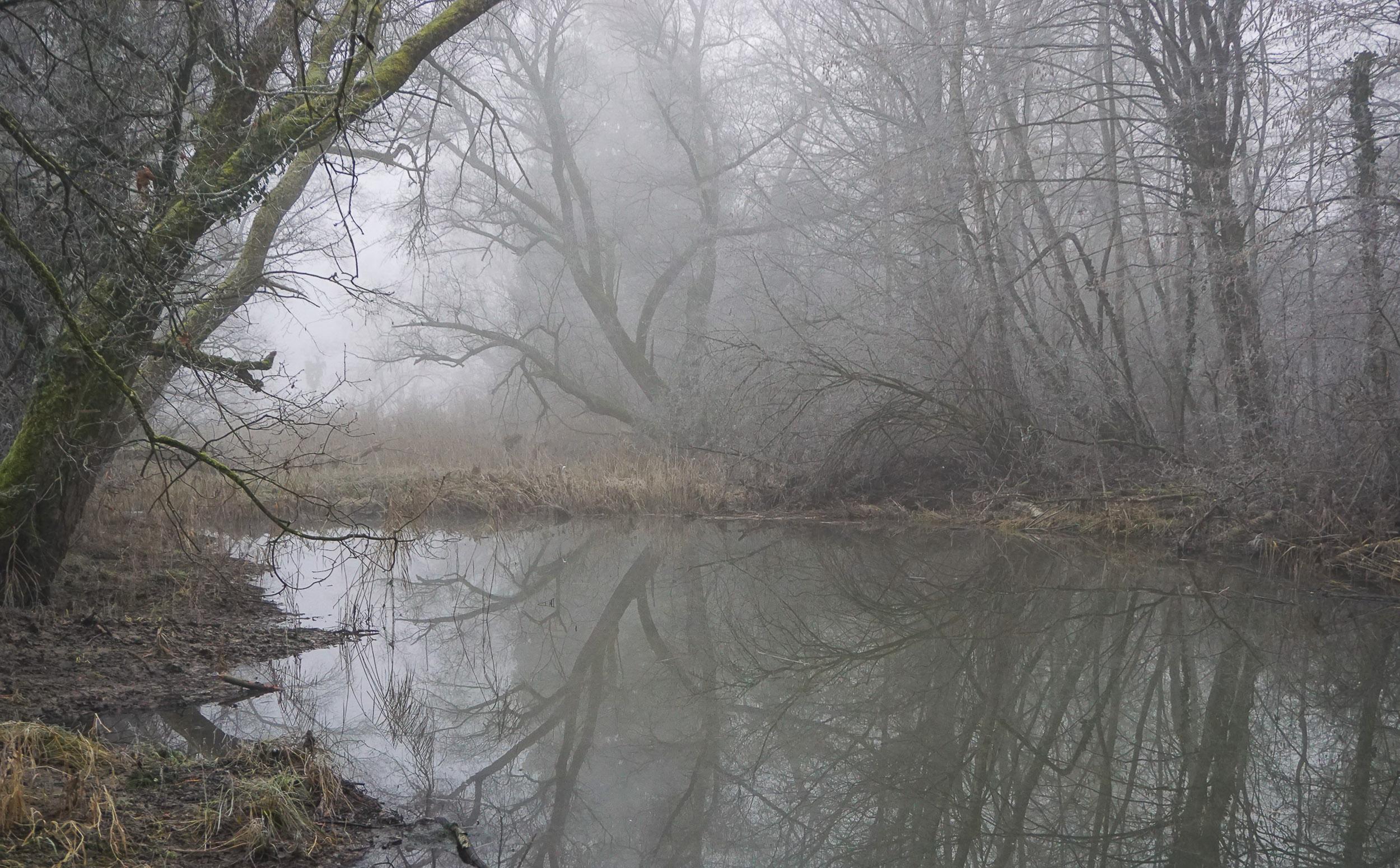 Altwasser I.jpg