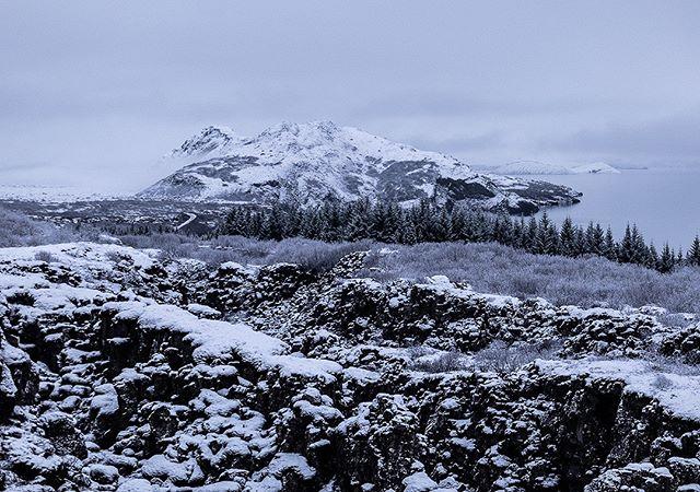 The colors of winter IX: #iceland #natureart #snow #winter #winterphotography #winterphotoshoot #naturephotography #leica #leicasl #leicaswitzerland #traveldeeper #artoftheday #landscape #monochrom #monochrome #monochromatic