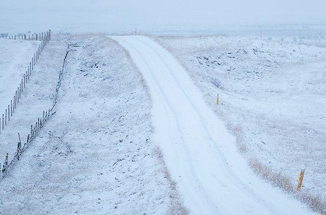 The colors of winter VIII: #iceland #natureart #snow #winter #winterphotography #winterphotoshoot #naturephotography #leica #leicasl #leicaswitzerland #traveldeeper #artoftheday #landscape  #monochrome #monochrom #monochromatic