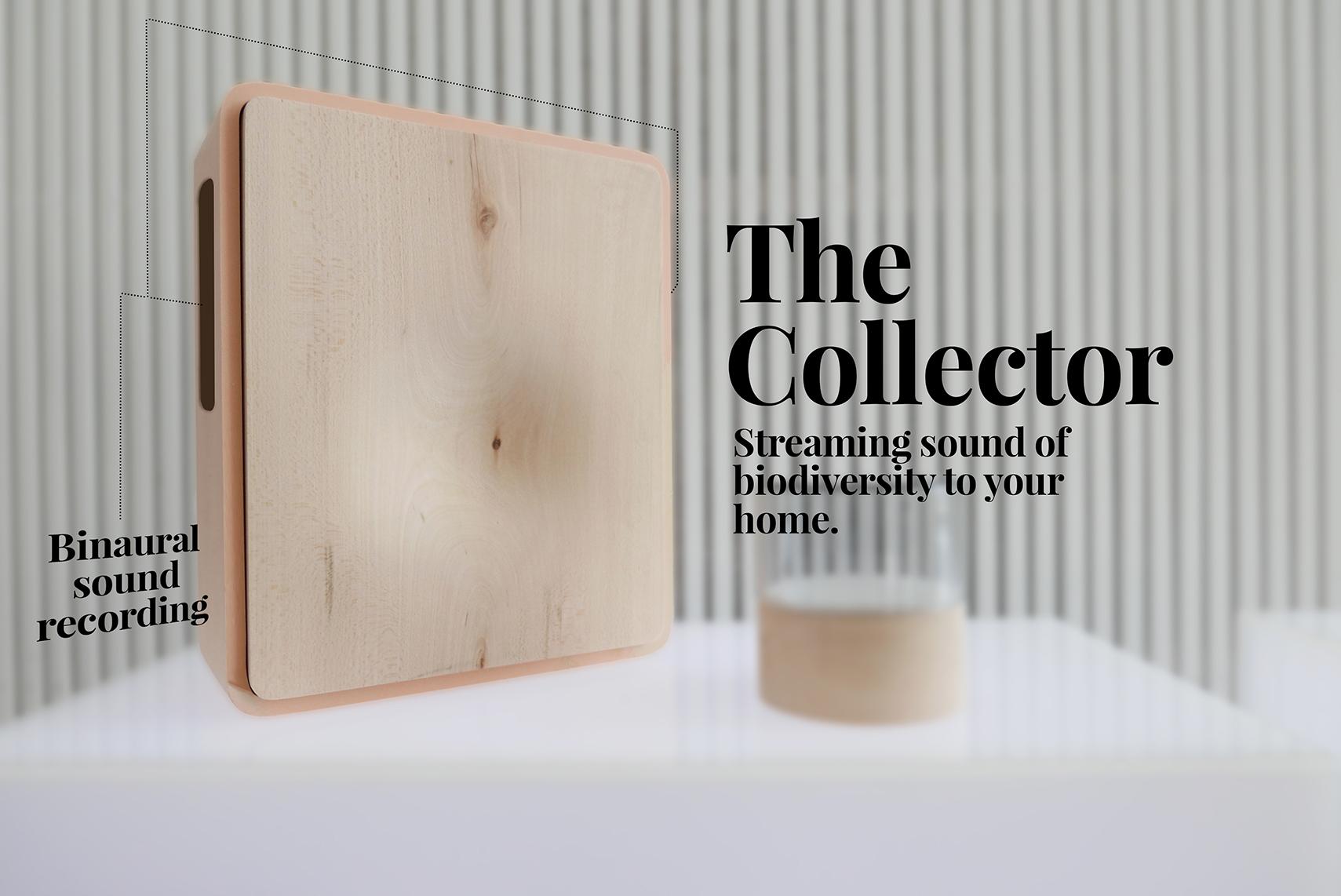 collector_web.jpg
