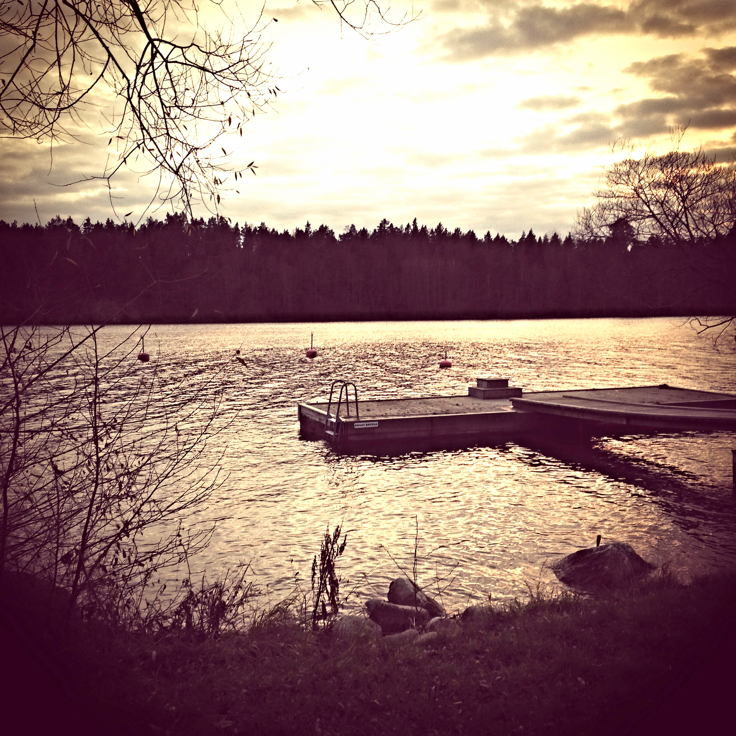 The water's edge in Bromma, Sweden