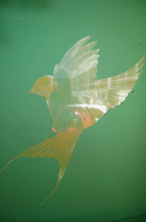 Image of Bird stencil by Ben Allen for a kitchen cabinet island