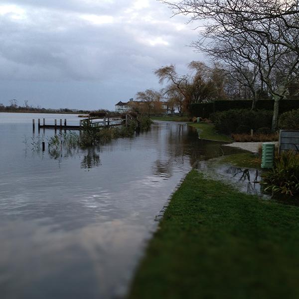 flood_lawn_sq.jpg