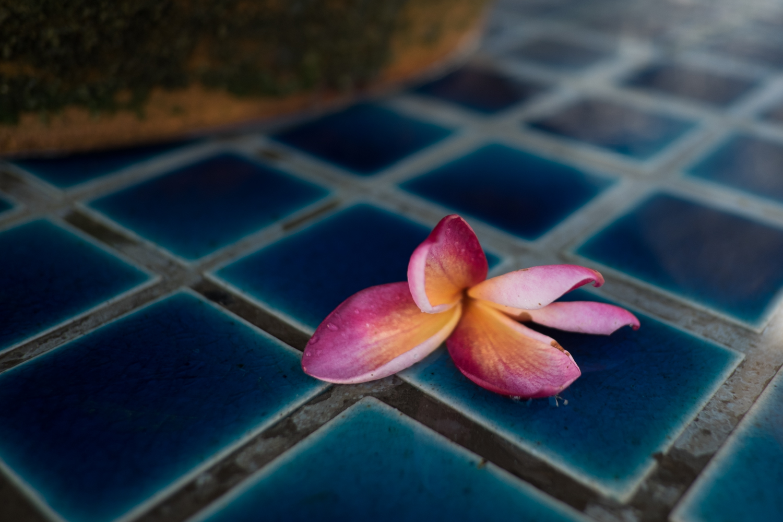 Blog_Thailand-22.jpg