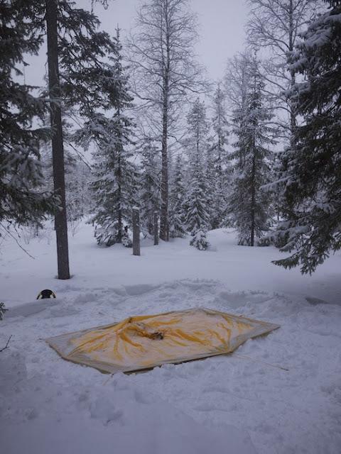 snow+58.jpg