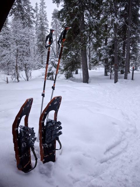 snow+608.jpg
