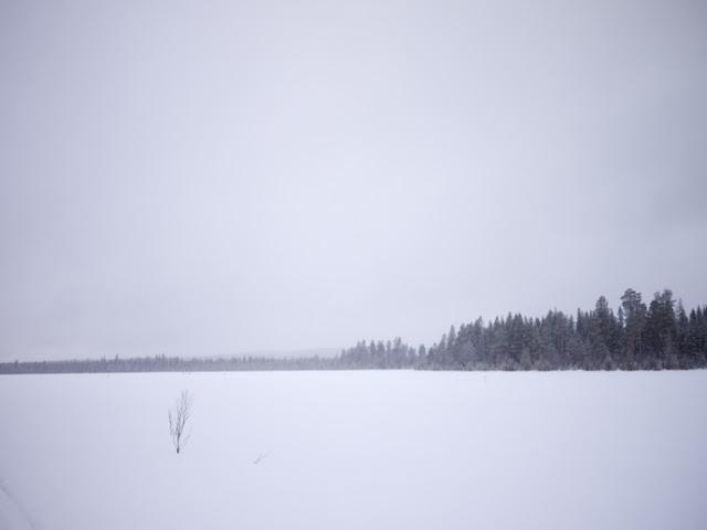 snow+63.jpg
