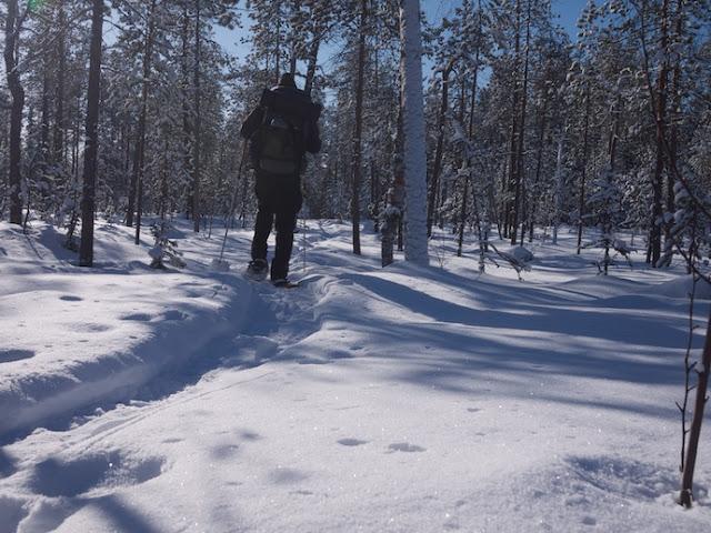 snow+10.jpg