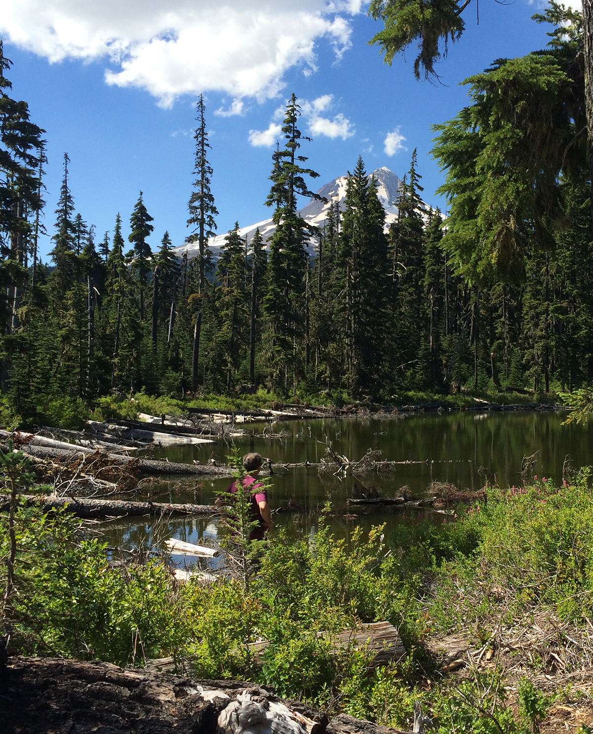 And the smell of the Douglas fir forest on Mt Hood is heavenly (Teacup Lake, not the elusive Boulder Lake which remains elusive)