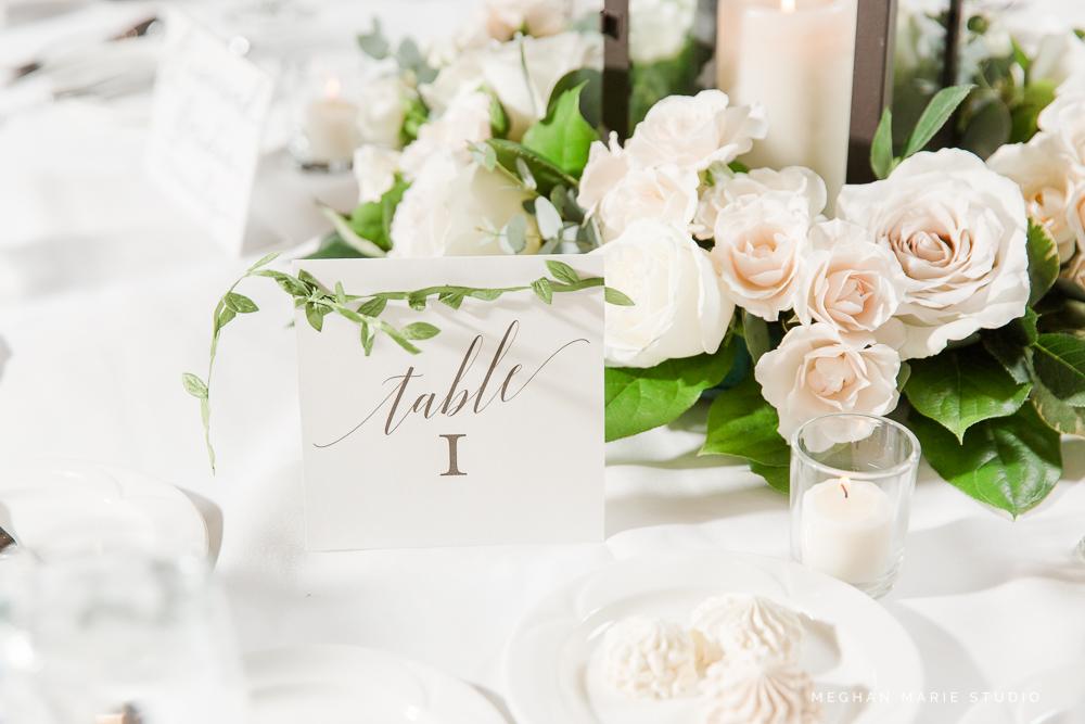 sullivan-wedding-blog-MeghanMarieStudio-1802.jpg