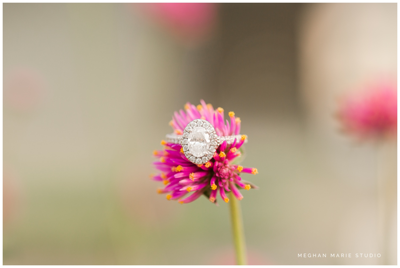 greenhouse-nursery-garden-downtown-troy-engagement-couple-meghan-marie-studio-wedding-photographer_0128.jpg