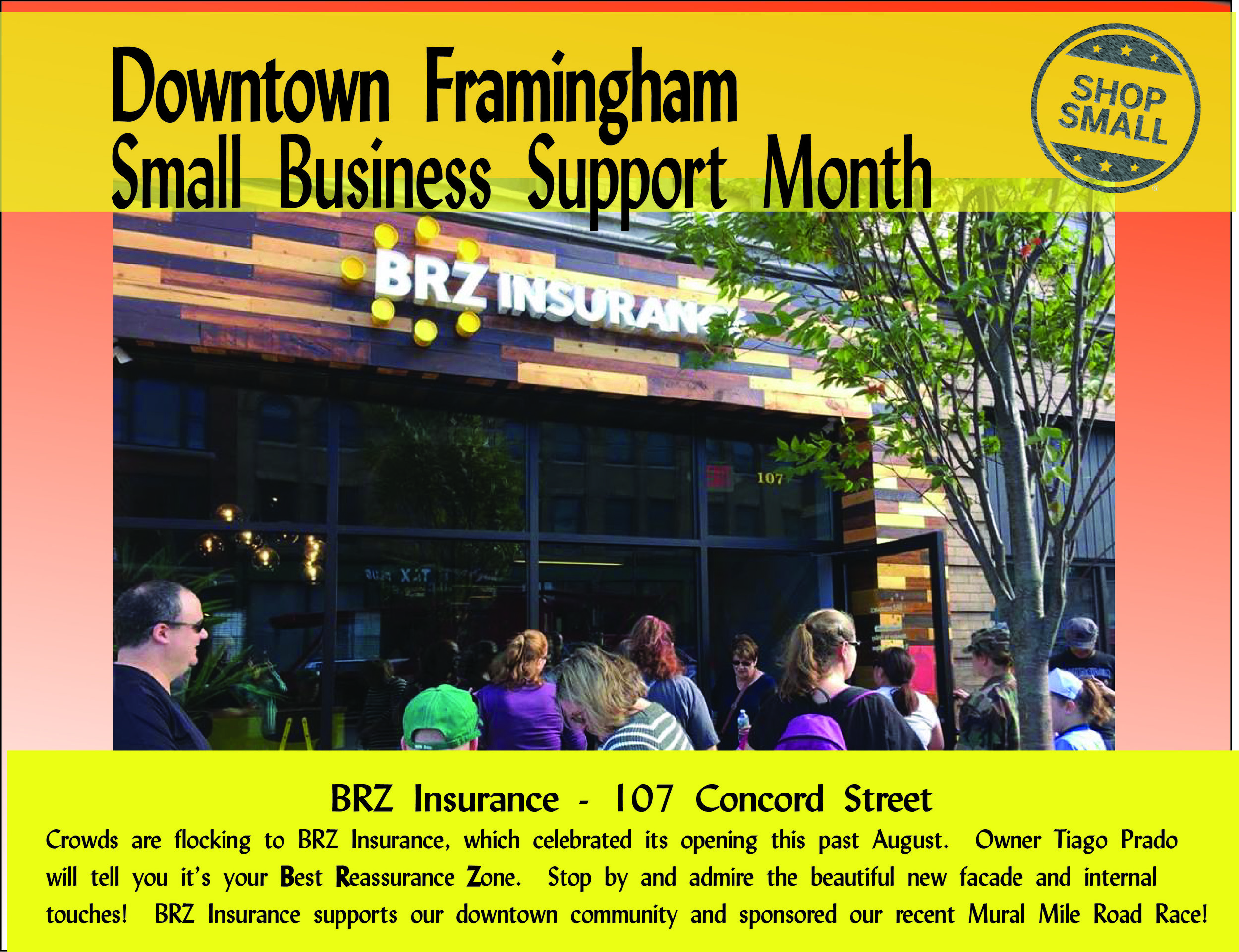 It's Day 12 of small business support month! Reason #12: enhance local democracy!  Local ownership of business means local owners with roots in the community are involved in key development decisions that shape our lives and local environment.  Today's promo is  BRZ Insurance Agency , your Best Reassurance Zone in the MetroWest! Check out the beautiful office at 107 Concord Street!