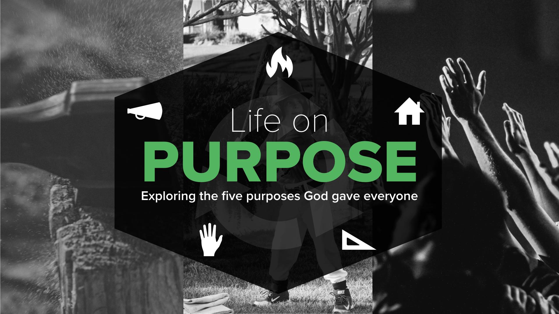 Life on Purpose graphic.001.jpeg