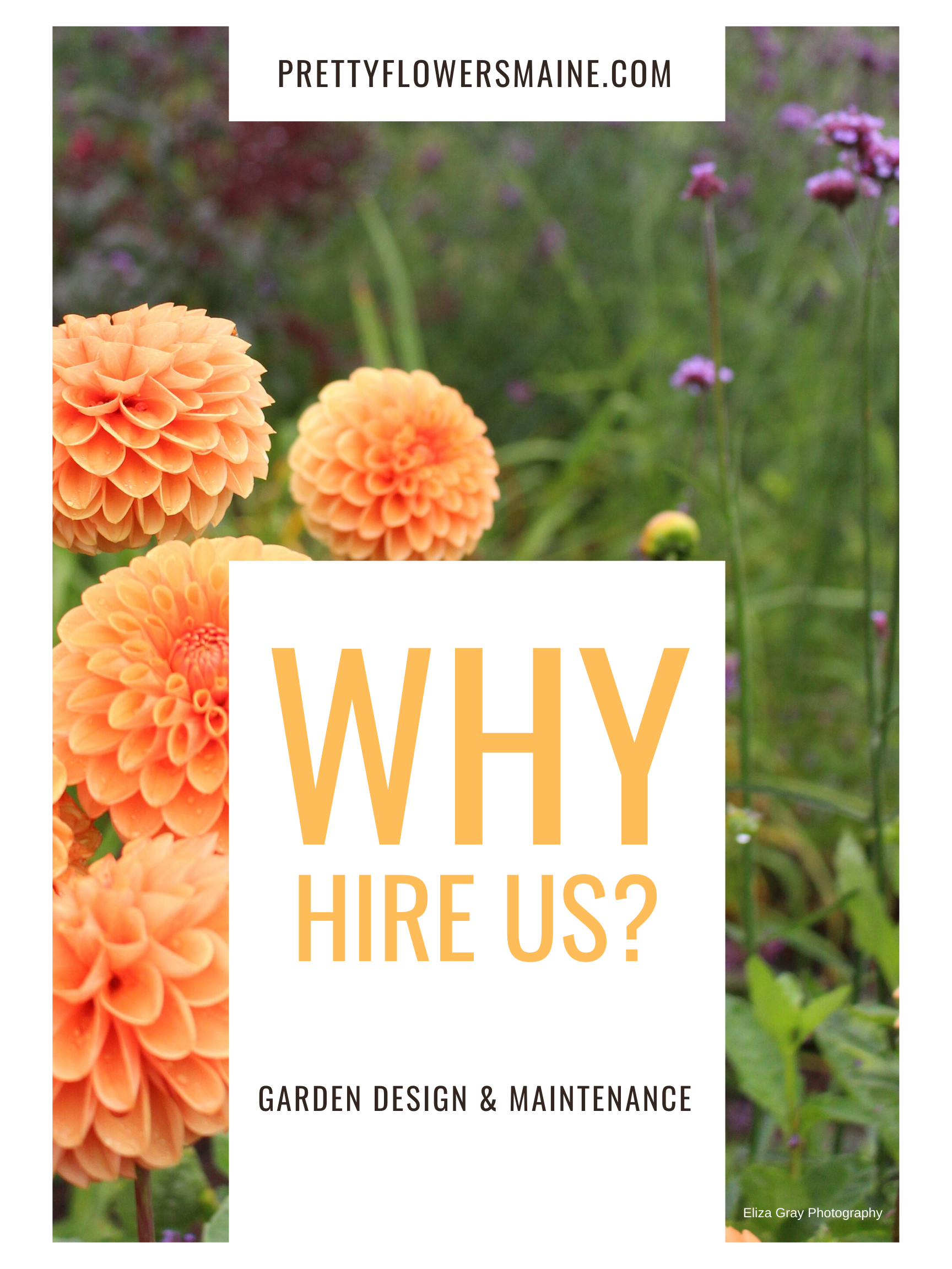 Copy of WHY HIRE US_.png