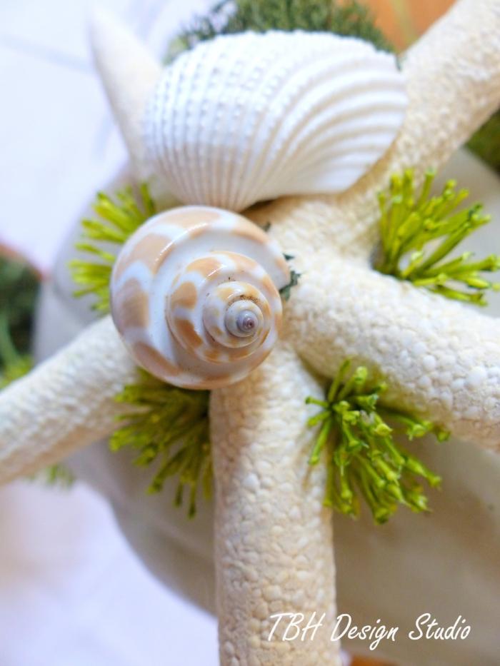 sea shell designs