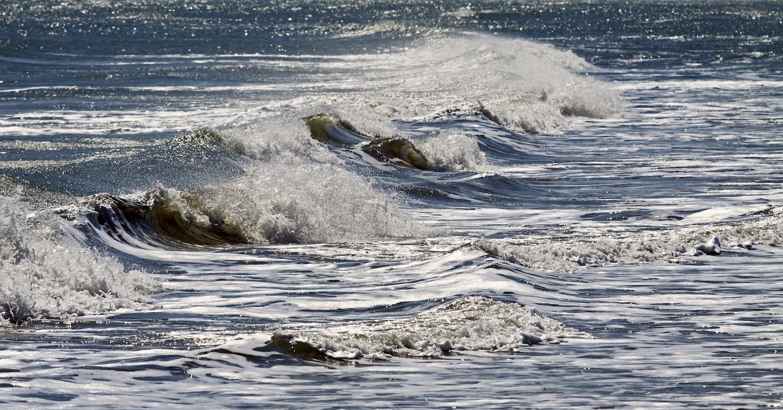 Gulf Coast III