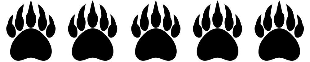 Bear Paws 5-5.jpg
