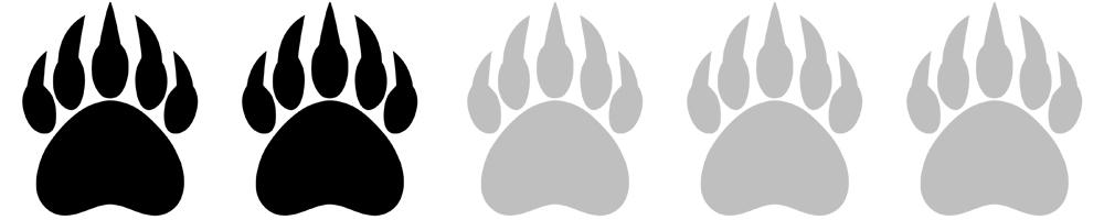 Bear+Paws 2 of 5.jpg