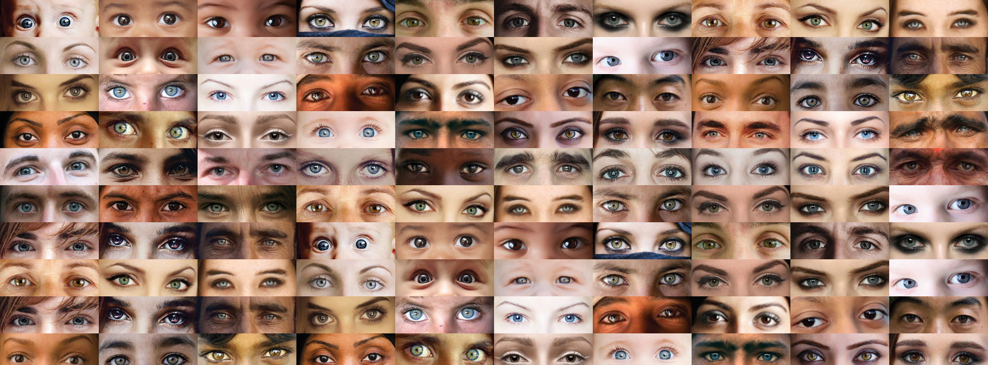 The EyeSite Blog  Everything About Your Eyes!   Learn More