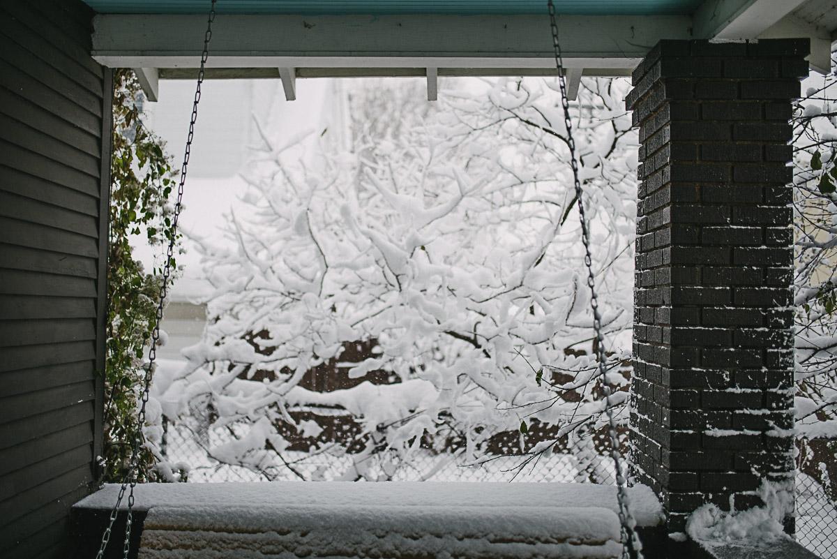 snow-day-11.18.14-17.jpg