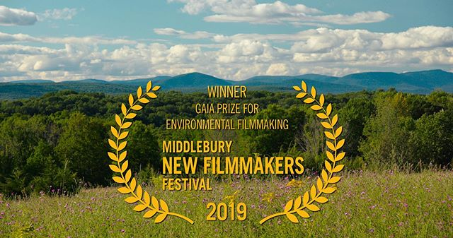 Great news! We can share that The Pollinators will be awarded the Gaia Prize for Environmental Filmmaking at the Middlebury New Filmmakers Festival. @middfilmfest.  We are honored by this prize named for Gaia, the primal Mother Earth goddess in Greek mythology.  Join us at this great festival in Middlebury, VT August 22-25. We screen on Saturday August 24th at 10AM in the Dana auditorium @middleburycollege. Tickets at www.middfilmfest.org #middleburyfilmfestival  #mnff2019 #bees  #honeybees #beekeeping  #beekeepers #pollinators  #environment  #food  #farming #pollination #agriculture #beehives #honey #film #filmmaking #documentary #documentaryfilm #filmfestival #vermont #greenmountainstate #middlebury