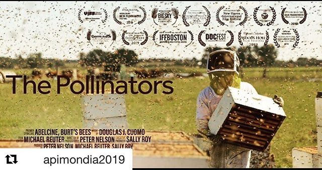 Excited about screening at @apimondia2019 in #montreal. We screen The Pollinators @pollinatorsfilm on 10 September at 18:00.  #bees  #honeybees #beekeeping  #beekeepers #pollinators  #environment  #food  #farming #pollination #agriculture #beehives #honey #film #filmmaking #documentary #documentaryfilm #canada