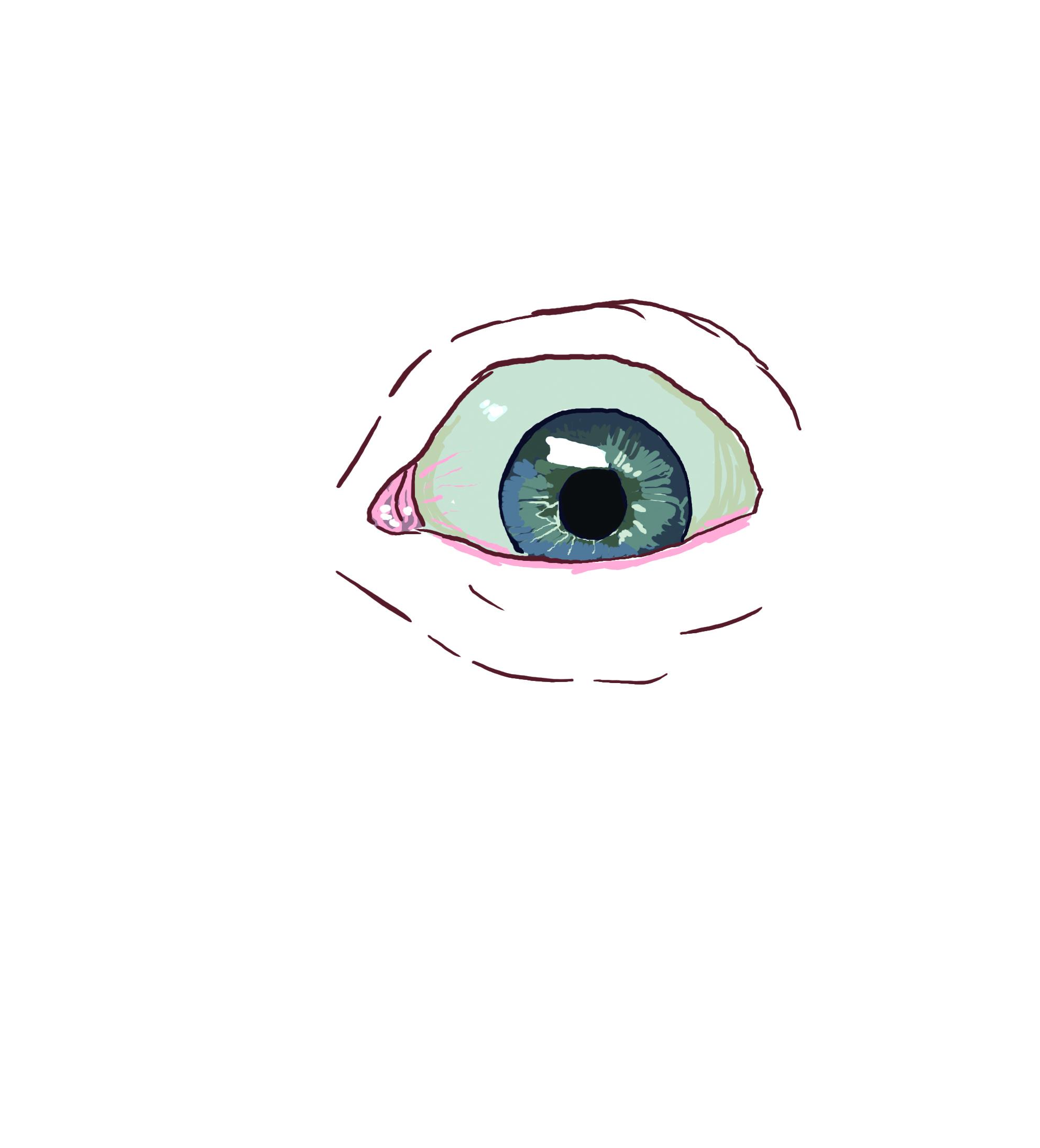 eyeballtransparent.jpg