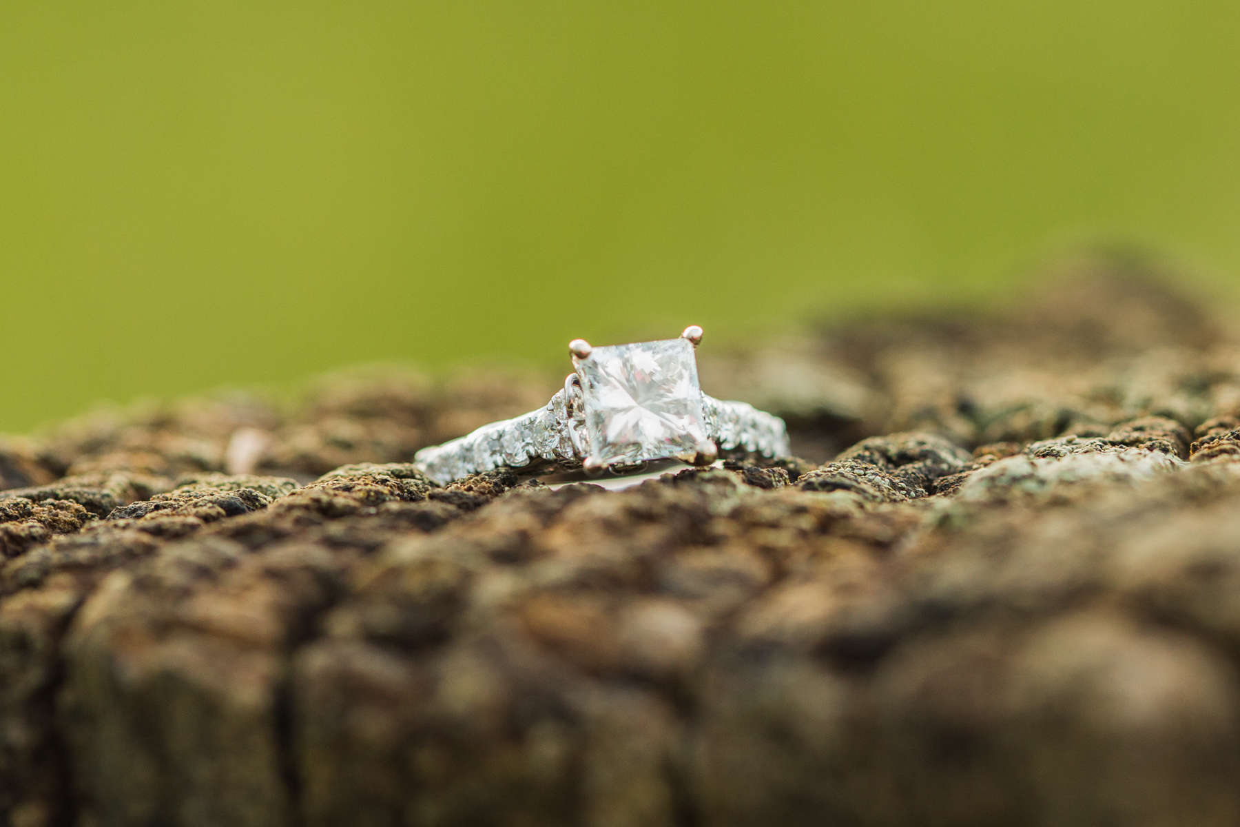 Cades-Cove-marriage-proposal-08