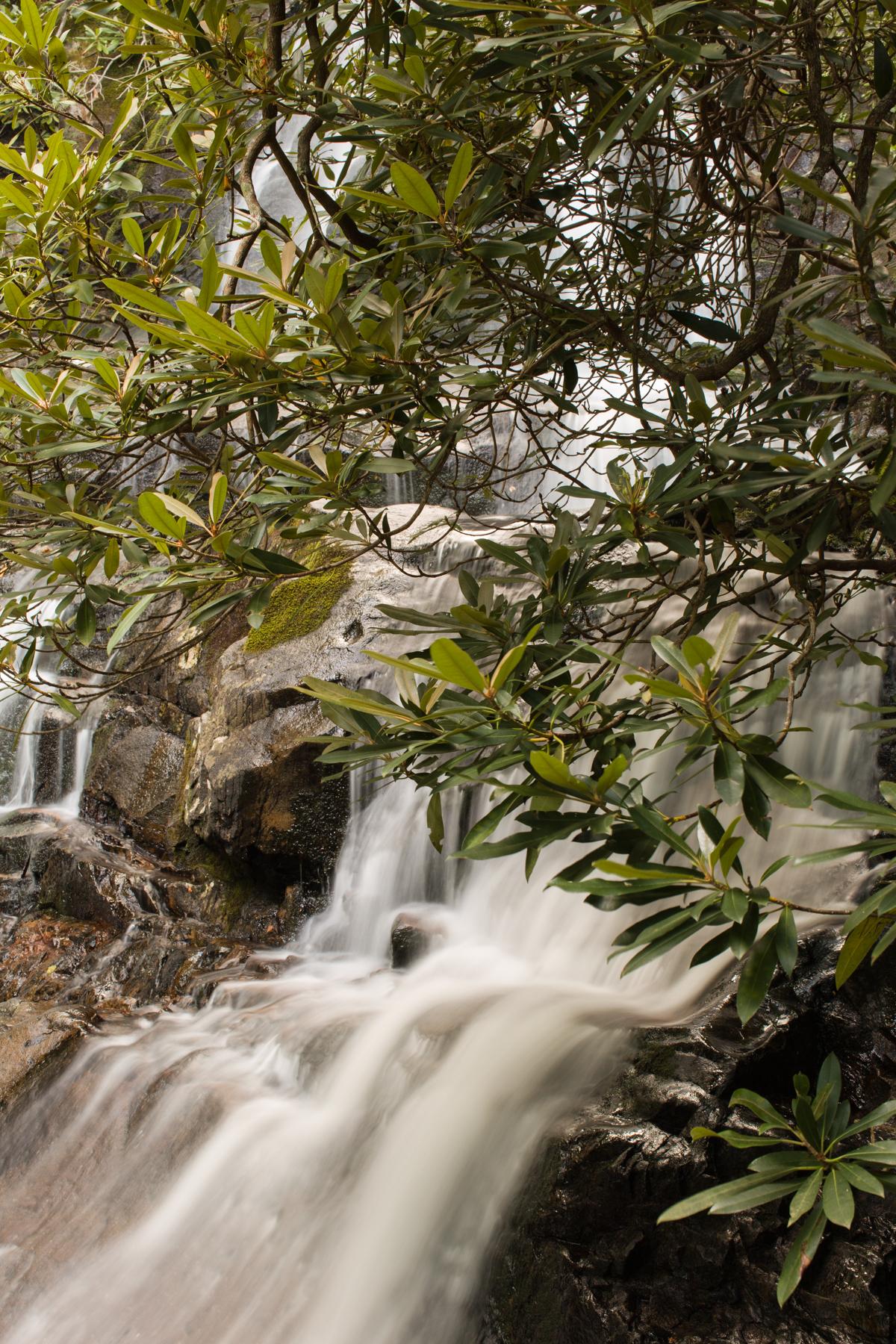 Laurel Falls Proposal 02